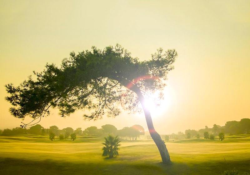 بيليك ملاعب الغولف غروب الشمس